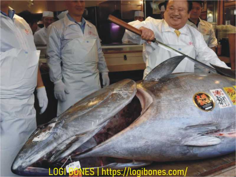 Bluefin Tuna -- Most Expensive Foods in the world